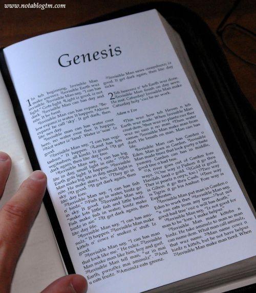 Lolcat Genesis
