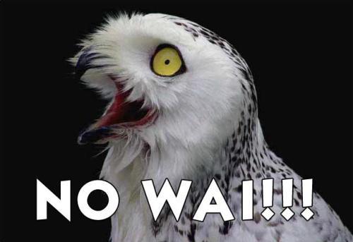 No wai